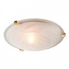 Накладной светильник Duna 353 золото