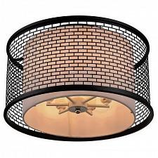 Накладной светильник Lussole LSP-9676 Орвието