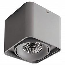Накладной светильник Monocco 52119