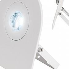 Настенный прожектор Uniel UL-00000389 ULF-F10