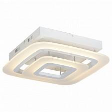 Накладной светильник ST-Luce SL900.502.02 SL900
