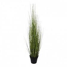 Растение в горшке (60 см) Трава 58006000