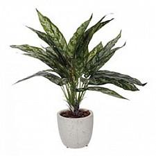 Растение в горшке Home-Religion (42 см) 58006200