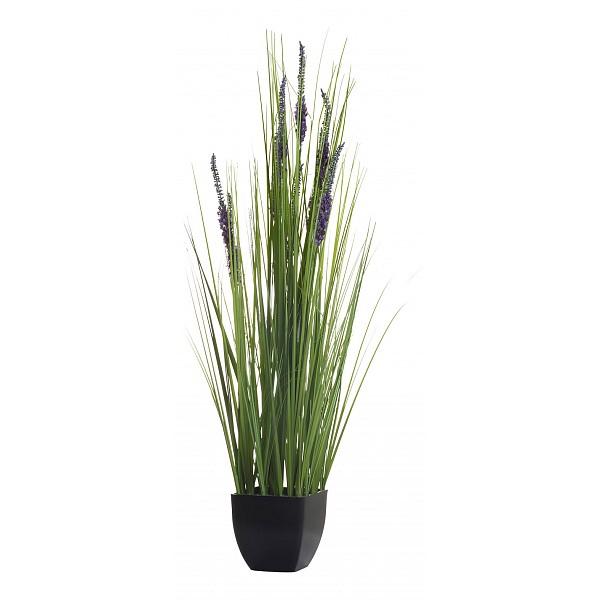 Растение в горшке Garda Decor(82 см) Вейник 8J-11RK0009Артикул - GRD_8J-11RK0009,Бренд - Garda Decor (Россия),Серия - Вейник 8J-11RK,Высота, мм - 820,Материал - ПВХ,Цвет - зеленый, фиолетовый,Тип поверхности - матовый,Гарантия, месяцев - 6<br><br>Артикул: GRD_8J-11RK0009<br>Бренд: Garda Decor (Россия)<br>Серия: Вейник 8J-11RK<br>Высота, мм: 820<br>Материал: ПВХ<br>Цвет: зеленый, фиолетовый<br>Тип поверхности: матовый<br>Гарантия, месяцев: 6