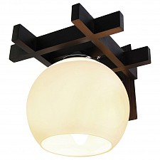 Накладной светильник Дубравия 196-42-11W Виола
