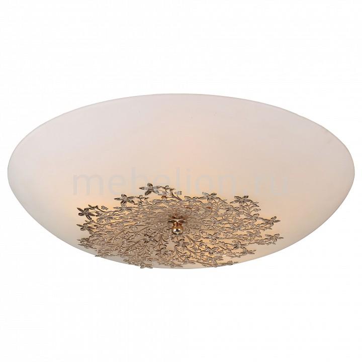 Накладной светильник Provence A4548PL-5GO