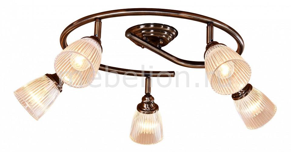 Купить Спот Виндзор CL539551, Citilux, Дания
