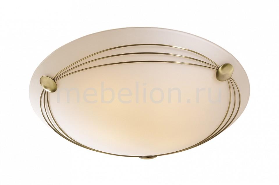 Накладной светильник Sonex 4262 Pagri
