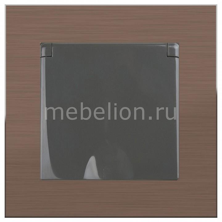 Розетка влагозащищенна с заземлением с крышкой со шторками Werkel Aluminium (Серо-коричневый) WL07-SKGS-USBx2-IP20+WL07-SKGSC-01-IP44 розетка abb bjb basic 55 шато 2 разъема с заземлением моноблок цвет чёрный
