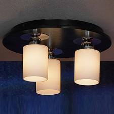 Накладной светильник Caprile LSF-6107-03