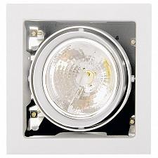 Встраиваемый светильник Cardano 214110