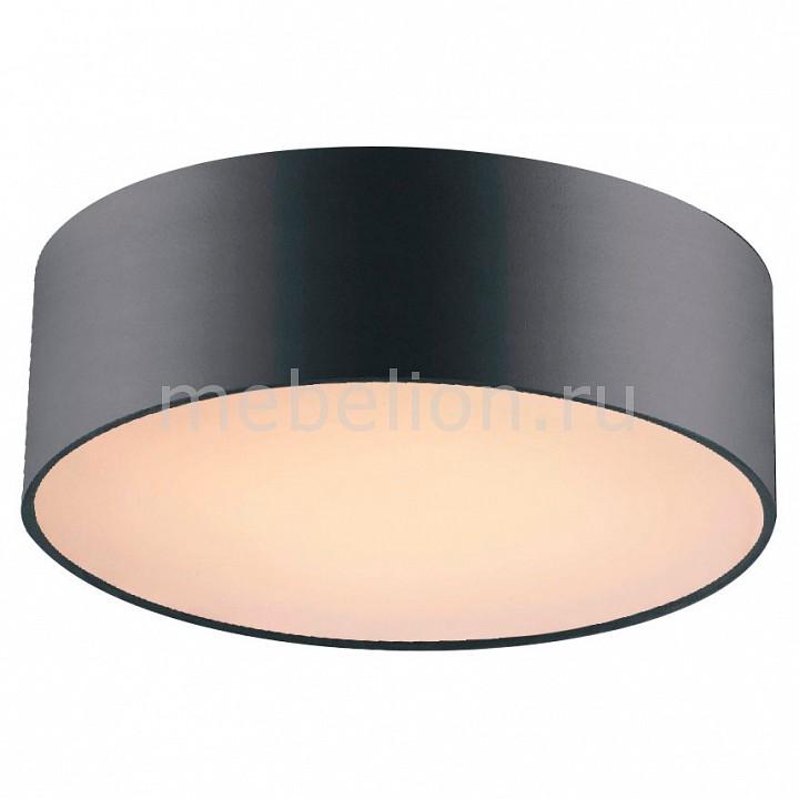 Накладной светильник Favourite Cerchi 1514-2C накладной светильник favourite cerchi 1514 2c