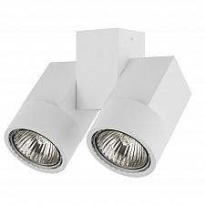 Светильник на штанге Illumo X2 051036