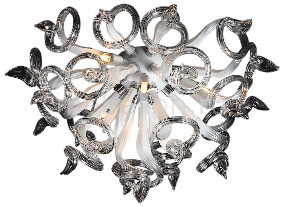 Накладной светильник Lightstar Medusa 890650