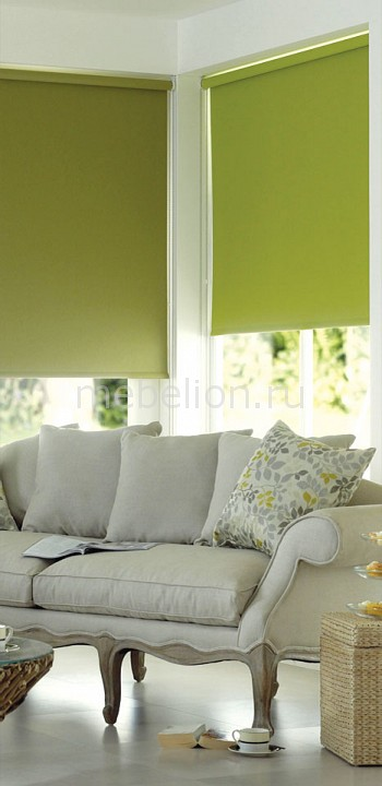Рулонная штора Garden (60х170 см) 1 шт. ASMIRA 2