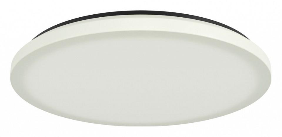 Купить Накладной светильник Zero 3673, Mantra, Испания