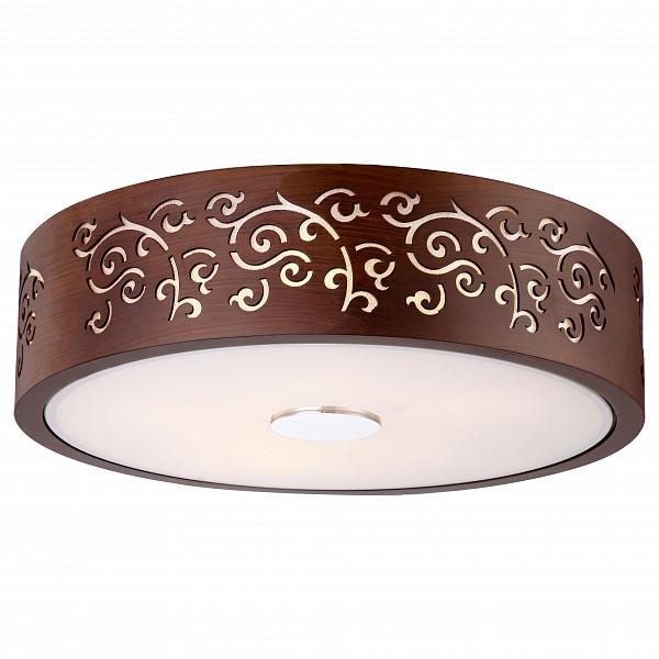 Накладной светильник Arte Lamp от Mebelion.ru