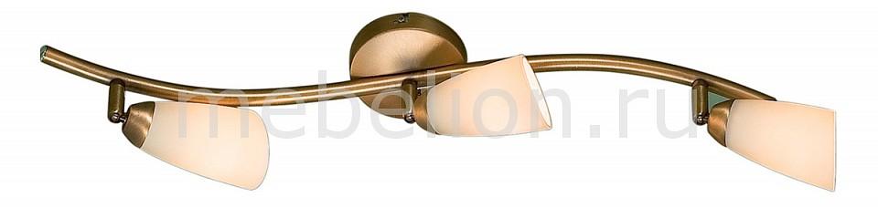 Купить Спот Белла CL501533, Citilux, Дания
