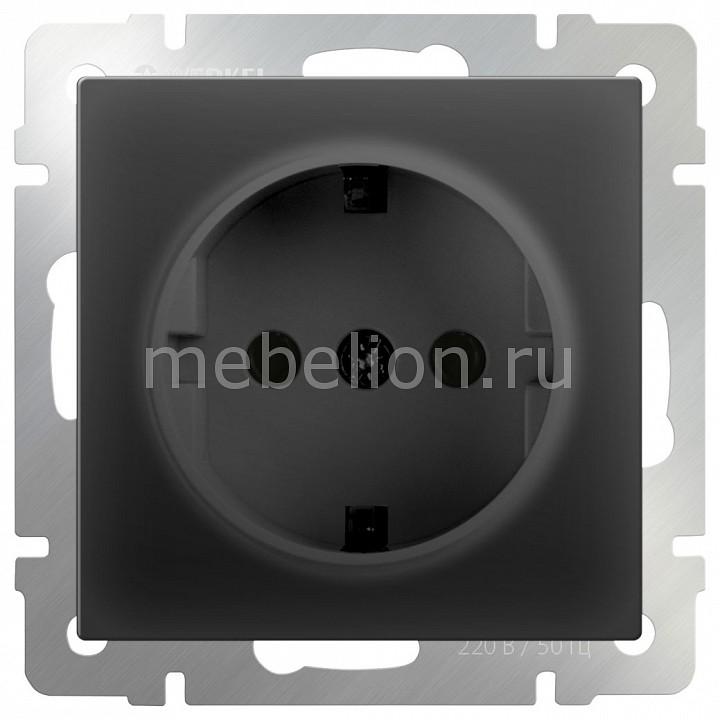 Купить Розетка с заземлением без рамки Черный матовый WL08-SKG-01-IP20, Werkel, Швеция