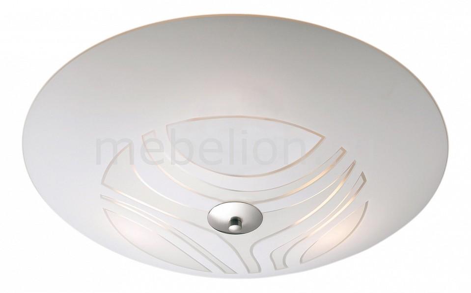 Купить Накладной светильник Cleo 148544-492512, markslojd, Швеция
