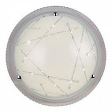 Накладной светильник ST-Luce SL493.502.01 Universale