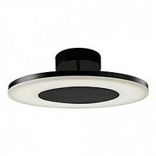 Накладной светильник Discobolo 4487