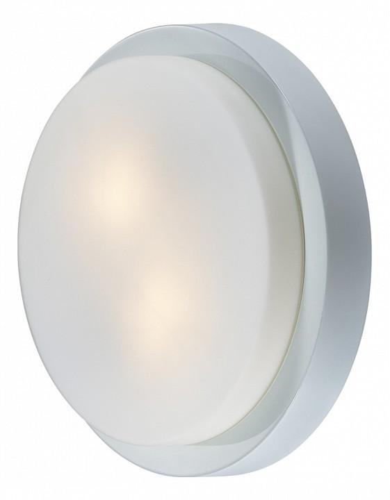 Накладной светильник Odeon Light 2745/2C Holger