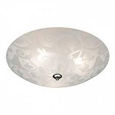 Накладной светильник Bambi 181341-456512