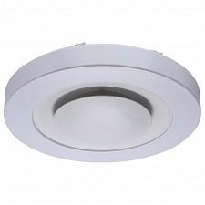 Накладной светильник MW-Light 660011901 Норден