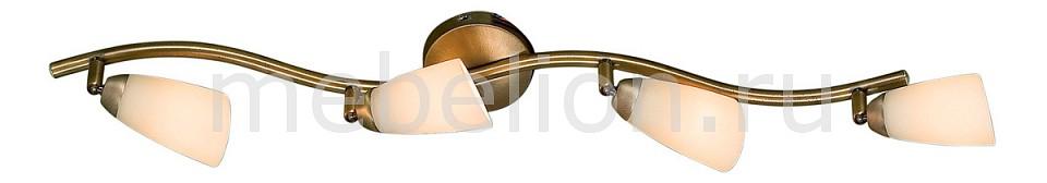 Спот Citilux CL501543 Белла
