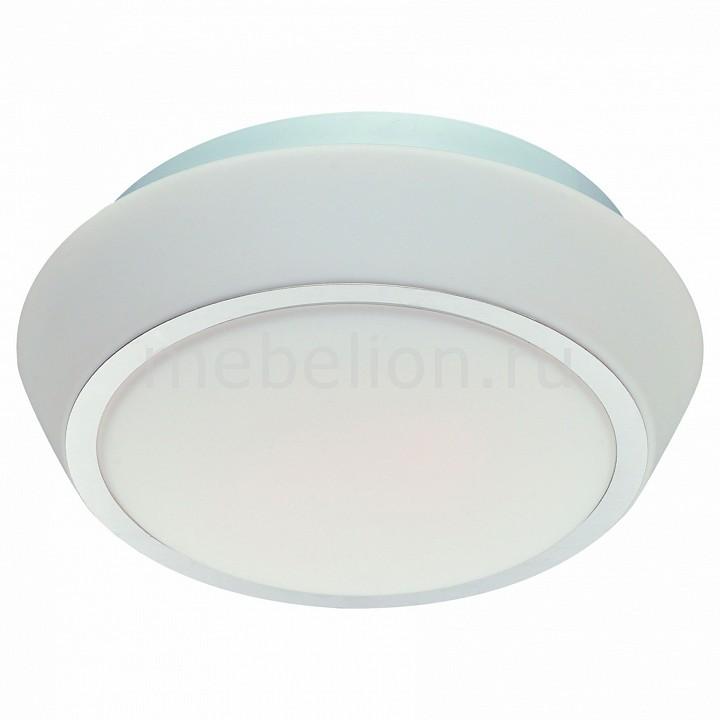 Накладной светильник ST-Luce Bagno SL496.502.03