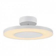 Накладной светильник Discobolo 4492