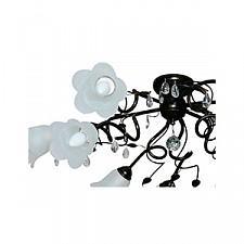 Потолочная люстра Аврора 10043-9C Флора