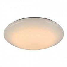 Накладной светильник ST-Luce SL875.012.01 SL875