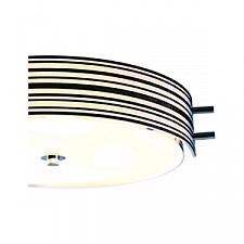 Накладной светильник ST-Luce SL484.542.04 Heggia