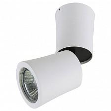 Накладной светильник 214 214456