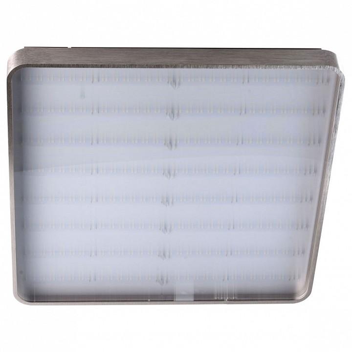 Купить Накладной светильник Граффити 678011801, MW-Light, Германия