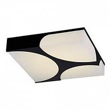 Накладной светильник ST-Luce SL863.402.01 Revista