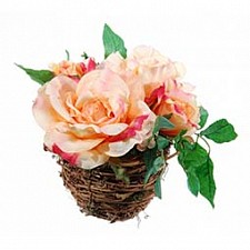 Растение в горшке Home-Religion (17 см) Персиковые розы 56000200