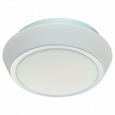 Накладной светильник Bagno SL496.502.03