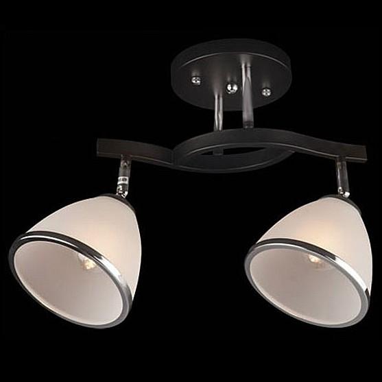 Купить Светильник на штанге 9612/2 хром/венге, Eurosvet, Китай