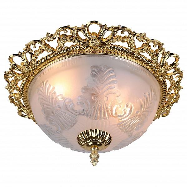 Накладной светильник Arte Lamp