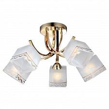Люстра на штанге Arte Lamp A6119PL-5GO Modello