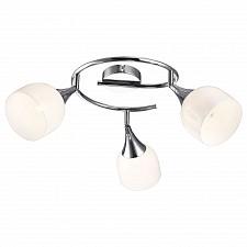Спот Arte Lamp A9556PL-3CC Trumpet