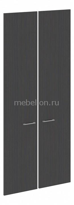 Двери распашные Skyland Xten XHD 42-2