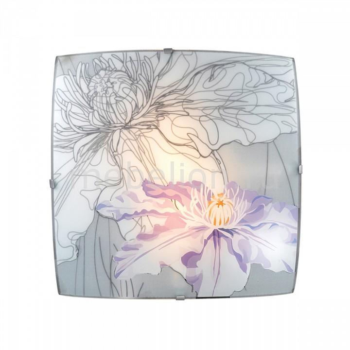 Накладной светильник Sonex Iris 1230 braun satin hair 7 st 780