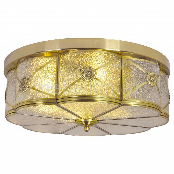 Накладной светильник Arte Lamp A9055PL-4AB Gunter