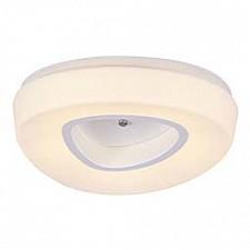 Накладной светильник Regen SL878.502.01