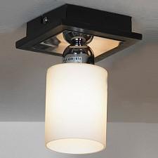 Светильник на штанге Caprile LSF-6117-01