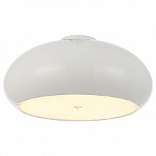 Накладной светильник Lightstar 804036 Cantinella